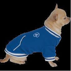 کاپشن سگ کروچی طرح سرنیویا آبی رنگ