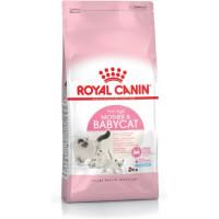 غذای خشک گربه رویال کنین بچه گربه 1 تا 4 ماه و مادر باردار و شیرده
