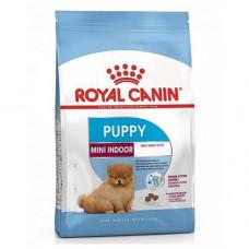 غذای خشک سگ رویال کنین توله نژاد خیلی کوچک داخل خانه 2 تا 10 ماه