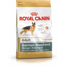 غذای خشک سگ رویال کنین بالغ نژاد ژرمن شپرد بالای 15 ماه