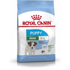 غذای خشک سگ رویال کنین توله نژاد کوچک 2 تا 10 ماه
