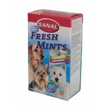 مکمل غذایی به همراه نعنا، چای سبز رزماری و کلروفیل مخصوص سگ سانال