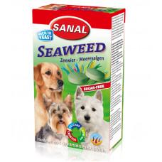 مکمل غذایی به همراه مخمر و جلبک دریایی مخصوص سگ سانال 100 گرمی